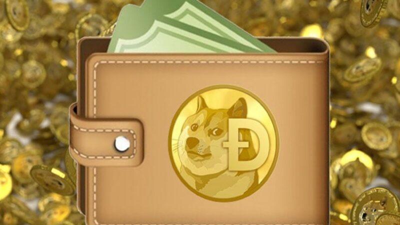 العملة الرقمية دوغ كوين